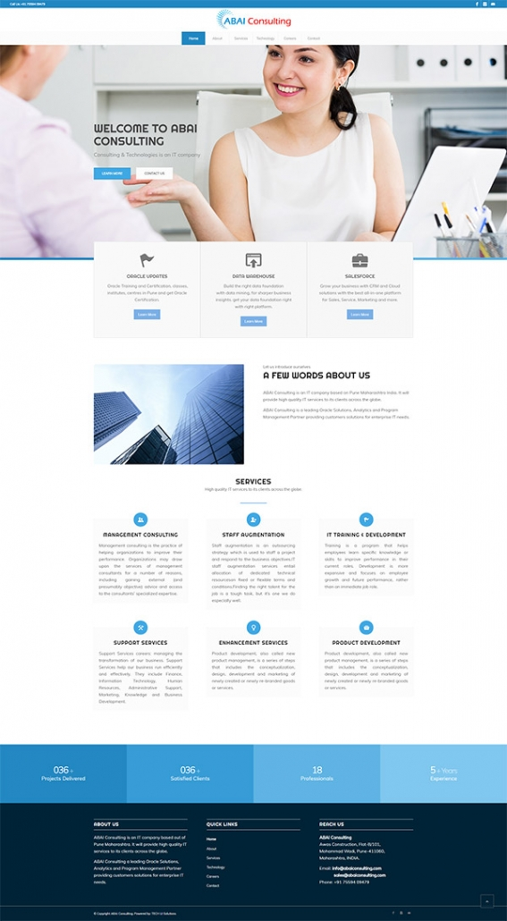 IT Consulting Company Website Development By TECHUI